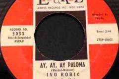 Ivo Robič u Polydoru